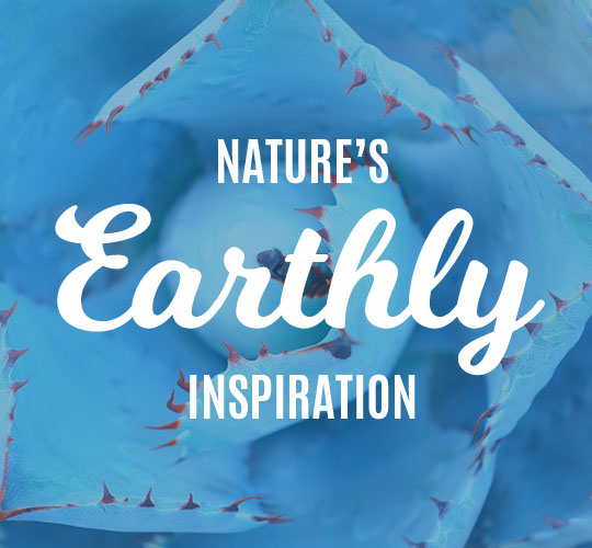 Nature's Earthly Inspiration
